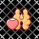 Nut Acorn Nut Acorn Icon