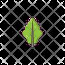 Oak Leaf Salad Icon