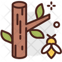 Oak Oak Tree Tree Icon