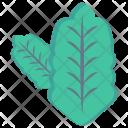 Oak Leaf Leave Icon