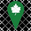 Oak Tree Nature Icon