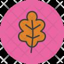 Oak Leaf Leaves Icon
