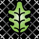 Oak Leaf Tree Plant Icon