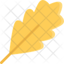 Oak Leaf Leaf Foliage Icon