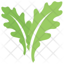 Toothed Two Leafy Icon