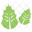Oak Leaves Icon