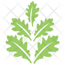 Oak Leaves Design Icon