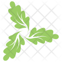 Oak Swirl Leaves Icon