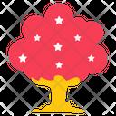 Oak Tree Tree Star Tree Icon