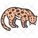 Ocelot Wild Cat Small Wild Cat Icon