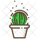 Old lady cactus Icon