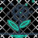 Oleander Icon