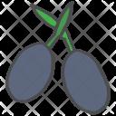 Olive Icon