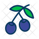 Food Healthy Nature Icon