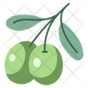 Oil Olive Natural Icon