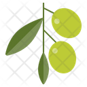 Olive Food Green Icon