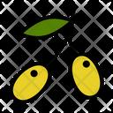 Olive Nature Vitamin Icon