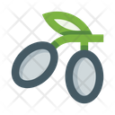 Olive Oil Natural Icon