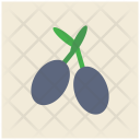 Olive Meditteranean Food Icon