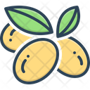 Olives Oil Branch Icon