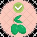 Keto Diet Olives Fruit Icon