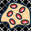 Omlet Egg Omelet Egg Icon