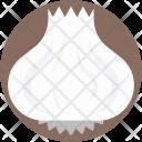 Onion Bulb Common Icon