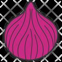 Onion Bulb Onion Common Onion Icon