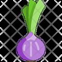 Onion Vegetable Organic Icon
