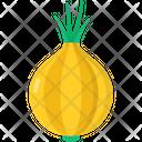 Onion Vegetable Food Icon