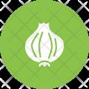 Onion Spice Food Icon