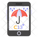 Online Weather Forecast Icon