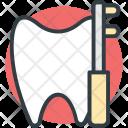 Oral Care Dental Icon