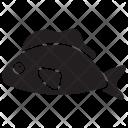 Oranda Pet Underwater Icon