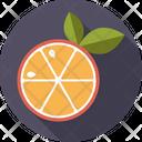 Orange Slice Leaves Icon