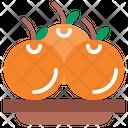 Orange Diet Vegetarian Icon