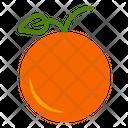 Orange Fruit Autumn Icon