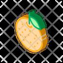 Orange Citrus Italian Icon