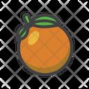 Orange Fruit Higenic Icon