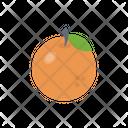 Orange Fruit Citrus Icon