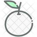 Orange Fruit Food Icon