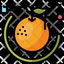 Orange Data Diet Icon