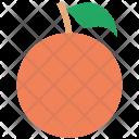 Orange Fruit Fresh Icon