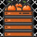 Orange Vegan Healthy Food Icon