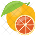 Orange Diet Organic Icon