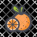 Orange Juicy Vitamin Icon