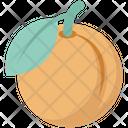 Food Orange Fruit Icon