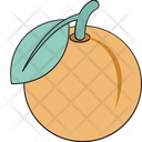 Fruit Food Diet Icon