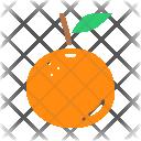 Orange Healthy Fruit Icon