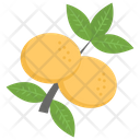 Orange Plant Icon